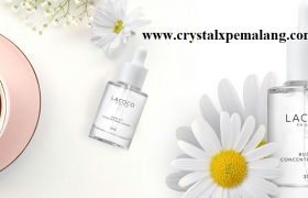 lacoco bust fit serum payudara