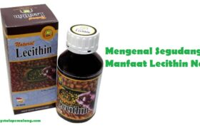 Manfaat Lecithin Nasa
